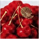 Atem Orly Cherry W 200X200 декоративная