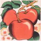 Atem Orly Apple 100x100 декоративная