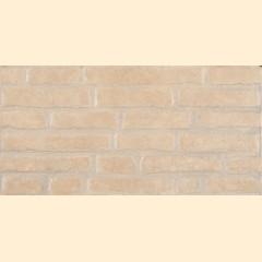 Bricks ZNXBR3 Gold