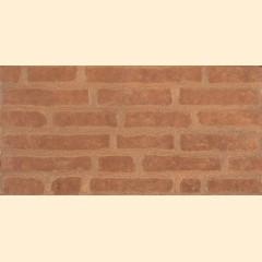Bricks ZNXBR2 Red